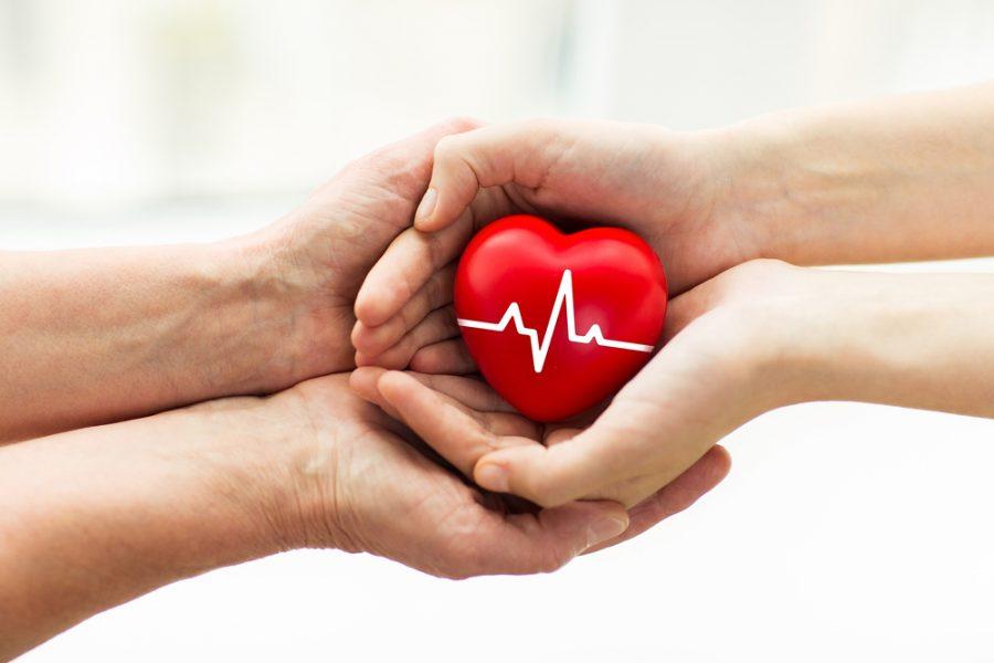 Esclarecimento e sensibilização ajudam famílias a decidir pela doação de órgãos